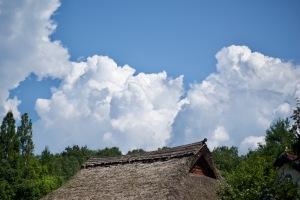 夏の備北丘陵公園-2