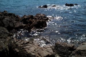 安芸灘・磯の風景