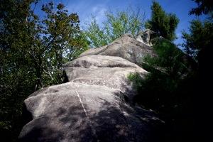 権現山へ登ってみた