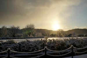 新年町内の雪景色