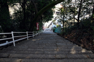 大竹の厳神社